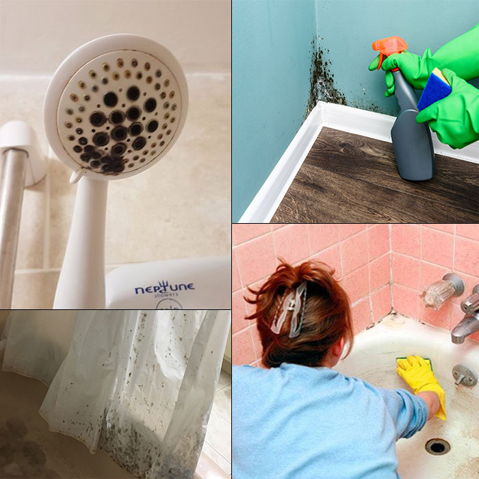 how to get rid of black mold in shower