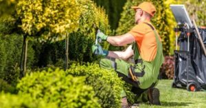 4 Points To Remember When Choosing Landscaping Company