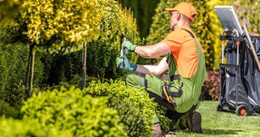 Choosing Landscaping Company
